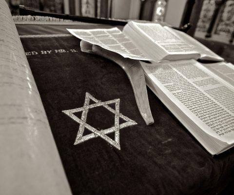 Vielfalts-Fellows gegen Antisemitismus